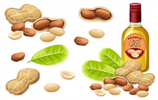 Nut Nutrition (Part 1) part 2 Peanuts, Almonds, Pistachios, Cashew, Walnuts. Health Benefits of peanuts, Health Benefits of almonds, Health Benefits of cashew, health benefits of pistachio, Health Benefits of walnuts, Health Benefits of macadamias, Health Benefits of Brazilian nuts, Health Benefits of pecan nuts, Health Benefits of hazel nuts, Health Benefits of coconuts, Nutritional Values of peanuts, Nutritional Values of almonds, Nutritional Values of cashew, health benefits of pistachio, Nutritional Values of walnuts, Nutritional Values of macadamias, Nutritional Values of Brazilian nuts, Nutritional Values of pecan nuts, Nutritional Values of hazel nuts, Nutritional Values of coconuts, side effects of peanuts, side effects of almonds, side effects of cashew, side effects of pistachio, side effects of walnuts, side effects of macadamias, side effects of Brazilian nuts, side effects of pecan nuts, side effects of hazel nuts, side effects of coconuts,