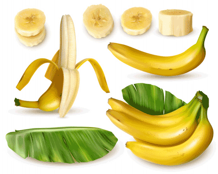 The Rise Of Banana, A Banana, Makes Me Think Nutritional Value Of Banana Benefits Of Banana Benefits Of Banana In Weight Loss  Benefits Of Banana In The Digestive System Also Benefits Of A Green Banana