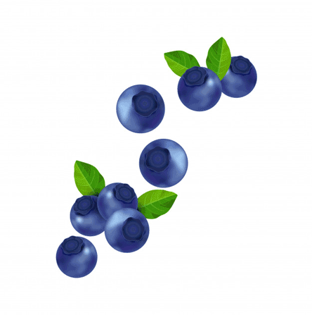 Nutrition value of blueberries